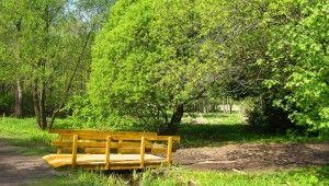 Ogród wstylu leśnym -ważna rola dekoracyjna drewna
