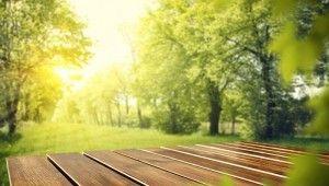 Jak zachować naturalny kolor drewna? -porady eksperta