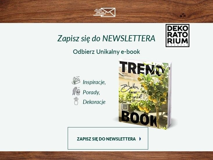 Zapis do newslettera - trendbook