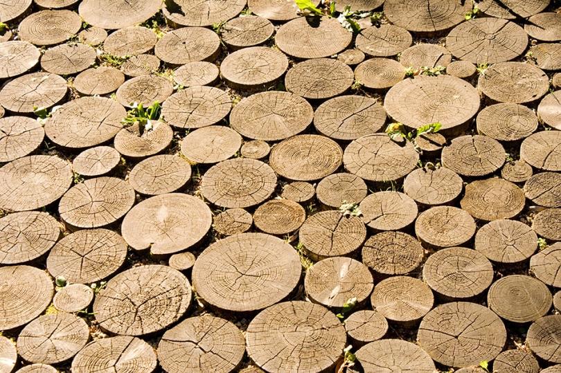 Ścieżka zkawałków drewna