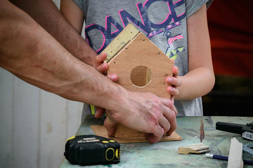 Budowanie karmnika