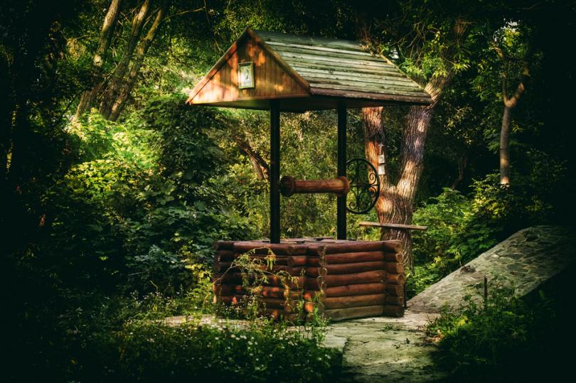 Drewniana studnia ukryta wśród roślin