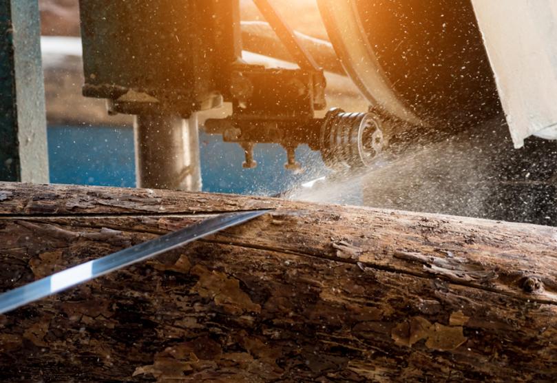 Obróbka drewnianych pali
