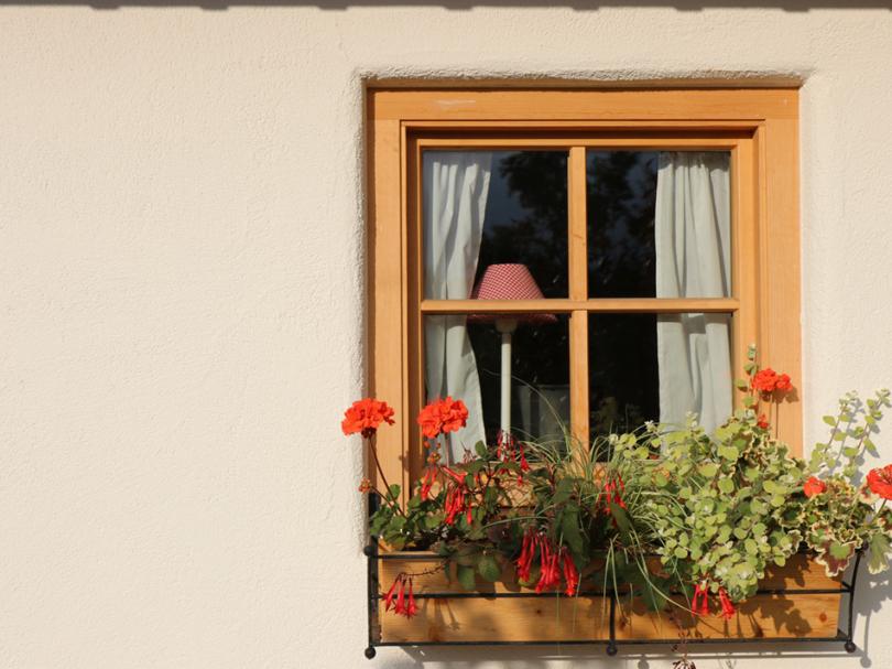 Okna zjasnego drewna